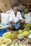 Editorial illustrative image. Food market in India Royalty Free Stock Image