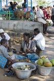 Editorial illustrative image. Scene of life in India. Illustrative image. Pondicherry, Tamil Nadu, India - April 21, 2014. Scenes of life in small poor villages Stock Images