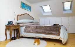 Editorial Image - Contemporary loft bedroom. 23rd May 2016 - Editorial shot of contemporary London loft bedroom. There are two cats one on the floor and one on royalty free stock photos
