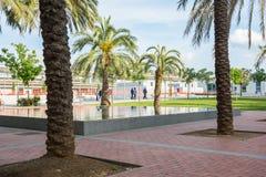 editorial Maj, 2018 girona Spain Park z drzewkami palmowymi zbliża t obraz royalty free