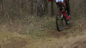 EDITORIAL. One Cyclist Moving Fast In Forest