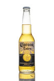 Editorial photo of Corona Extra beer isolated on white. MINSK, BELARUS - MARCH 27, 2017: Editorial photo of five bottles of Corona Extra Beer over white stock images