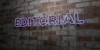 EDITORIAL - Señal de neón que brilla intensamente en la pared de la cantería - 3D rindió el ejemplo común libre de los derechos Fotos de archivo libres de regalías
