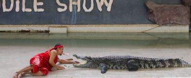 Editorial-6th przedstawienia duży krokodyl na podłoga w zoo obraz stock
