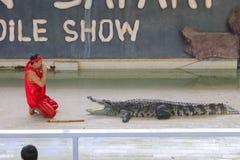 Editorial-4th przedstawienia duży krokodyl na podłoga w zoo fotografia royalty free