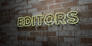 EDITORS - Glowing Neon Sign on stonework wall - 3D rendered royalty free stock illustration Stock Image