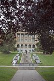 Canadian pride of government. The edmonton alberta legislature building framed by maple trees, vertical photo Stock Images