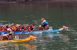 Edmonton Dragon Boat Festival Foto de Stock