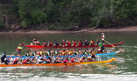 Edmonton Dragon Boat Festival Fotografia de Stock Royalty Free