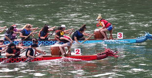 Edmonton Dragon Boat Festival Stock Photo