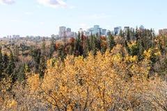 Edmonton-im Stadtzentrum gelegene Skyline Stockbilder