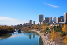 Edmonton Skyline In Autumn. Edmonton Skyline with blue sky and coloured leaves in autumn Royalty Free Stock Images