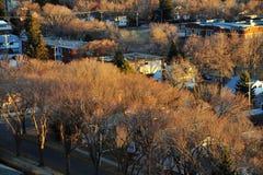Edmonton van de herfst stad royalty-vrije stock afbeelding