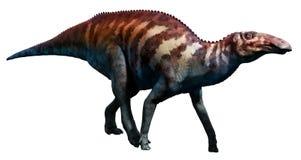 Edmontosaurus vektor illustrationer