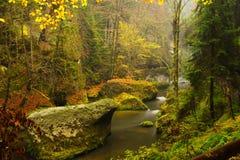 Edmund-` s Schlucht im Nationalpark von Tschechen die Schweiz Stockfotografie