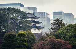 Edo Castle i Tokyo Arkivfoto