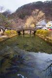 Edo Wonderland Fotografie Stock Libere da Diritti