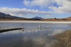 Eduardo Alveroa, Uyuni Bolivia Royalty Free Stock Photos
