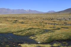 Eduardo Alveroa, Uyuni Bolivia Stock Photo