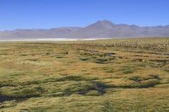 Eduardo Alveroa, Uyuni Bolivia Royalty Free Stock Photo