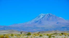 Eduardo Avaroa Andean Fauna National reserv, Bolivia Royaltyfria Foton