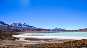 Eduardo Avaroa Andean Fauna National reserv, Bolivia Royaltyfria Bilder