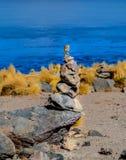 Eduardo Avaroa Andean Fauna National Reserve, Bolivia. Bird at the colourful Laguna Celeste Royalty Free Stock Photo
