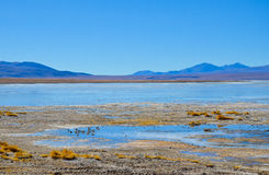 Eduardo Avaroa Andean Fauna National Reserve, Bolivia Stock Photos