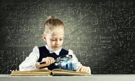 Educação escolar Imagem de Stock Royalty Free
