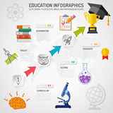 Educación Infographics Imagen de archivo libre de regalías