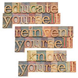 Educate, reinvent, know yourself. Educate yourself - personal development concept - isolated text in vintage wood letterpress printing blocks stained by color Stock Photo
