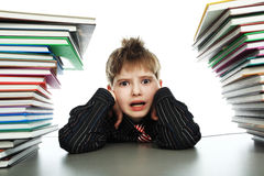 Educated boy Royalty Free Stock Photo