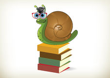Educated Snail Stock Photo