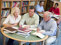Education for adults. Five adults sitting at library tables, studying together Stock Photography
