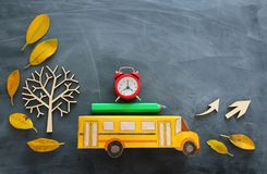 Education and back to school concept. Top view photo of cardboard school bus, alarm clock and pencil next to tree with autumn dry. Leaves over classroom royalty free stock photography