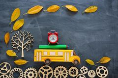 Education and back to school concept. Top view photo of cardboard school bus, alarm clock and pencil next to tree with autumn dry. Leaves over classroom stock photo