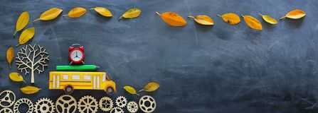 Education and back to school concept. Top view photo of cardboard school bus, alarm clock and pencil next to tree with autumn dry. Leaves over classroom royalty free stock images