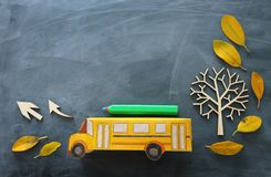 Education and back to school concept. Top view photo of cardboard school bus and pencil next to tree with autumn dry leaves over. Classroom blackboard royalty free stock photos