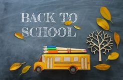 Education and back to school concept. Top view photo of cardboard school bus and pencils next to tree with autumn dry leaves over. Classroom blackboard stock photography