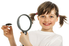 An education biology for children Stock Images