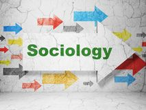 Education concept: arrow with Sociology on grunge wall background. Education concept:  arrow with Sociology on grunge textured concrete wall background, 3D Stock Images