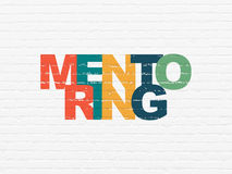 Education concept: Mentoring on wall background Royalty Free Stock Image