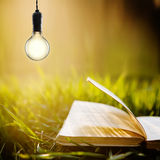 Education concept - open book and bulb Stock Photography