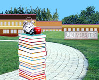 Education concept. Path to college or university Royalty Free Stock Images