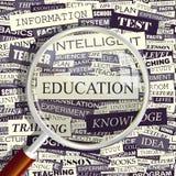 EDUCATION royalty free illustration