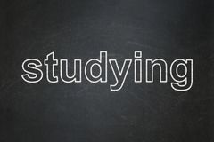 Education concept: Studying on chalkboard background. Education concept: text Studying on Black chalkboard background Stock Images