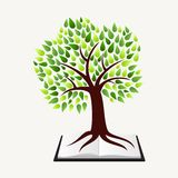 Education concept tree book Royalty Free Stock Photo