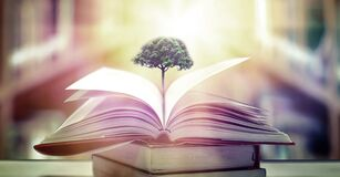 Free Education Concept With Tree Of Knowledge Planting On Opening Old Big Book In Library With Textbook, Imagine A Picture Book Of An A Royalty Free Stock Photos - 168898428