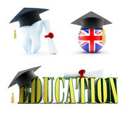 Education of a dentist in England set on a white background 3D illustration Royalty Free Stock Photos