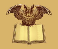 Education emblems. Owl on a book. Owl on a book. University and education emblems isolated Royalty Free Stock Image